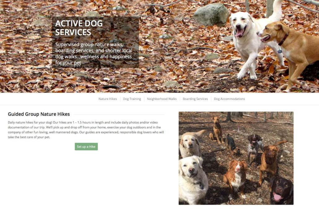 active-dog-nature-hikes